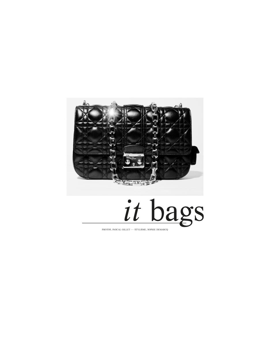 sac_miss_Dior_pascal_gillet_1