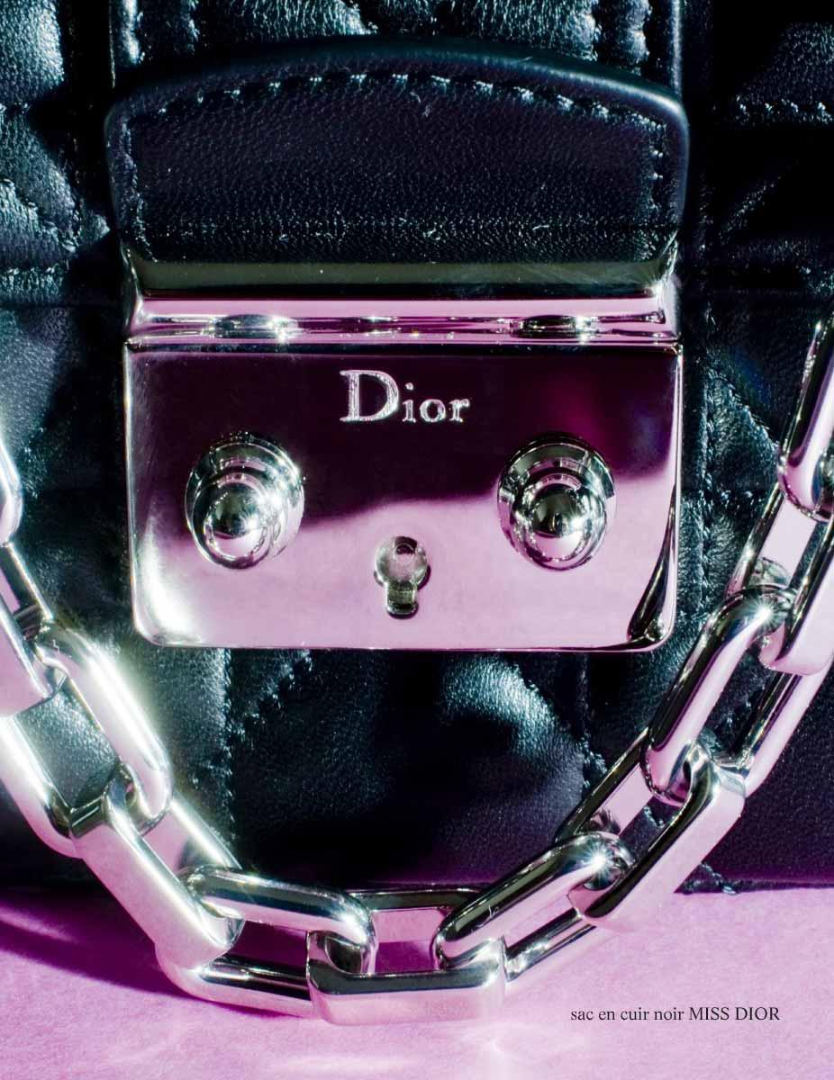sac_miss_Dior_pascal_gillet_2